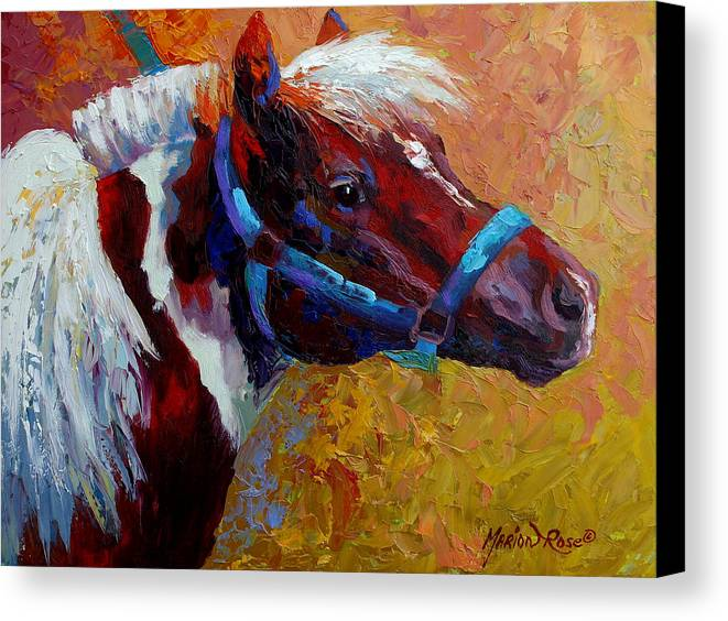 Western Canvas Print featuring the painting Pony Boy by Marion Rose