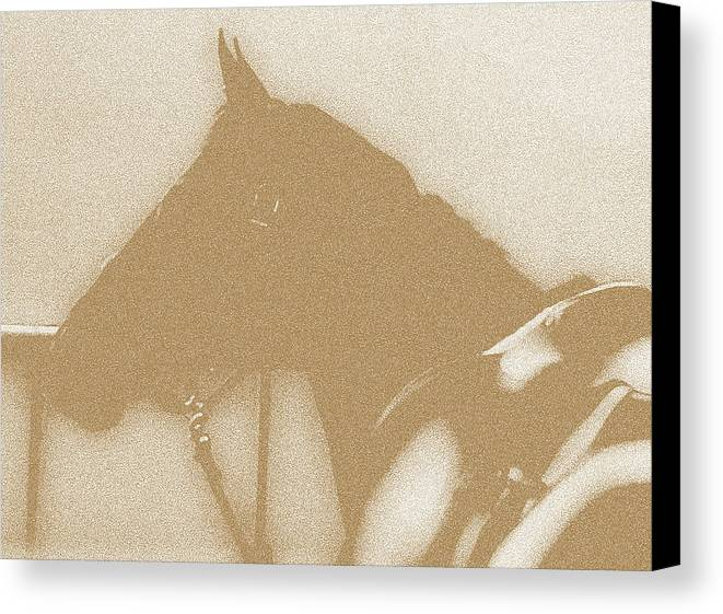 Horses Canvas Print featuring the digital art Ready To Ride by Donna Thomas
