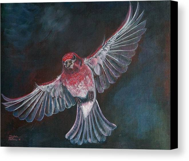 Acrylic Canvas Print featuring the painting Redbird by Sylvia Stone