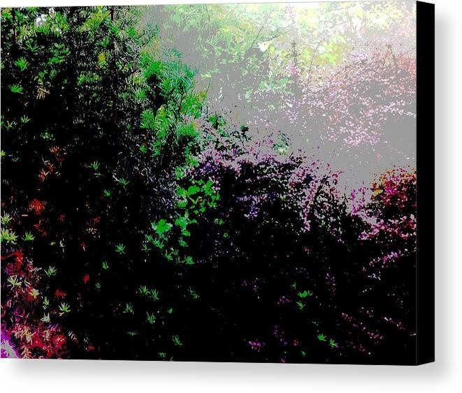 Landscape Canvas Print featuring the digital art Reflection by Elle Justine