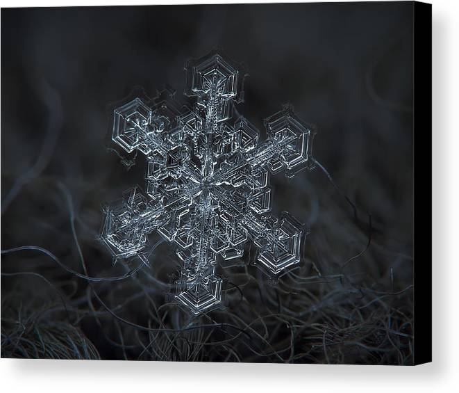 Snowflake Canvas Print featuring the photograph Snowflake Photo - Complicated Thing by Alexey Kljatov