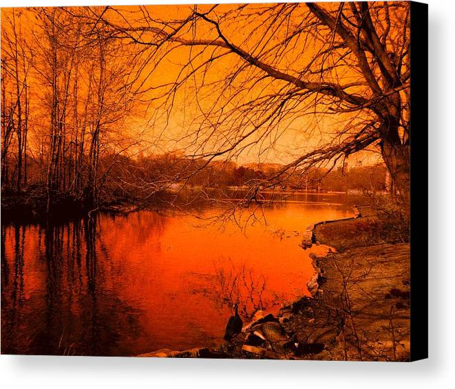 Landscape Canvas Print featuring the photograph Studying The Sunset by Kendall Eutemey