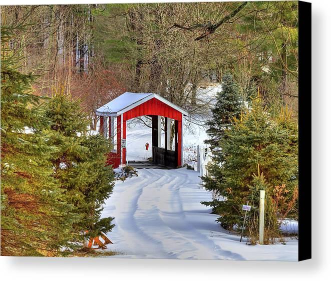 Bridge Canvas Print featuring the photograph Winter Crossing by Evelina Kremsdorf