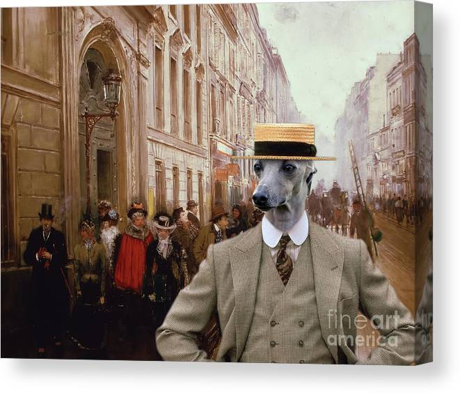 Italian Greyhound Canvas Print featuring the painting Italian Greyhound Art Canvas Print by Sandra Sij