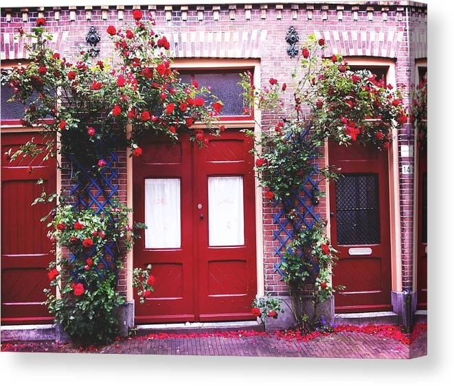 Roses Canvas Print featuring the photograph Arch Of Roses by Jennifer MacNeill
