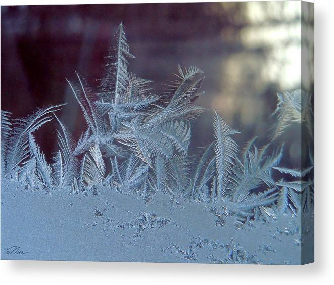 Ice Canvas Print featuring the photograph Ice Crystals Of Winter by Nancy Griswold