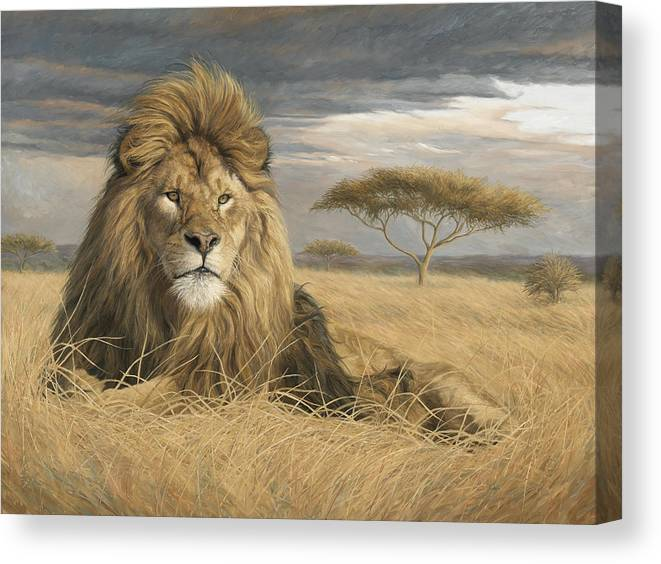 Lion Canvas Print featuring the painting King Of The Pride by Lucie Bilodeau