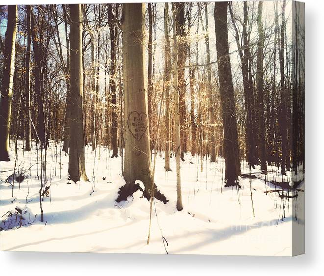 Forest Canvas Print featuring the photograph Love Is In The Air by Rachel Barrett
