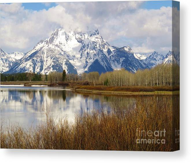 Tetons Canvas Print featuring the photograph Mighty Moran by Harriet Peck Taylor