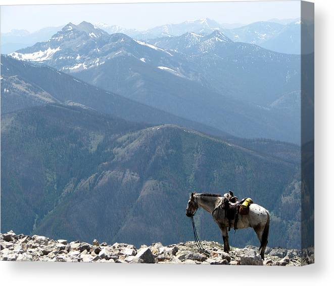 Prairie Reef Fire Lookout Canvas Print featuring the photograph Prairie Reef View With Chief by Pam Little