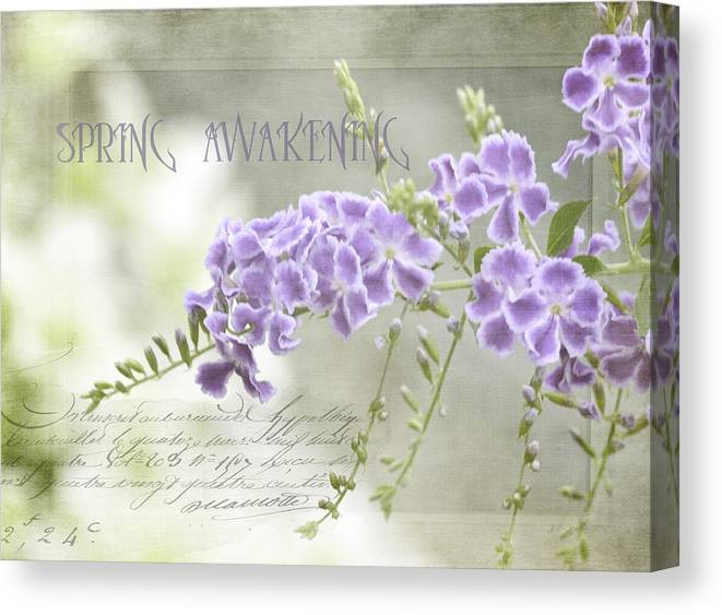 Photo Art Canvas Print featuring the photograph Spring Awakening by Julie Palencia
