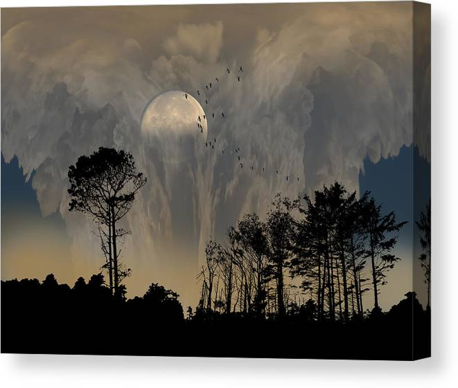 Trees Canvas Print featuring the photograph 2440 by Peter Holme III