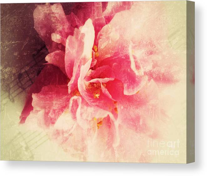 Camellia Canvas Print featuring the photograph Camellia Flower With Music by Ruby Hummersmith