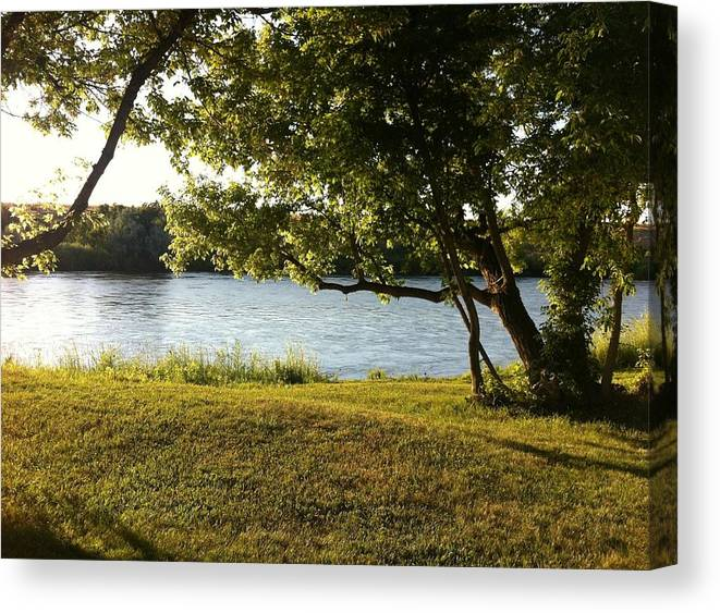 Tree Canvas Print featuring the photograph Lazy River by Caryn Schulenberg