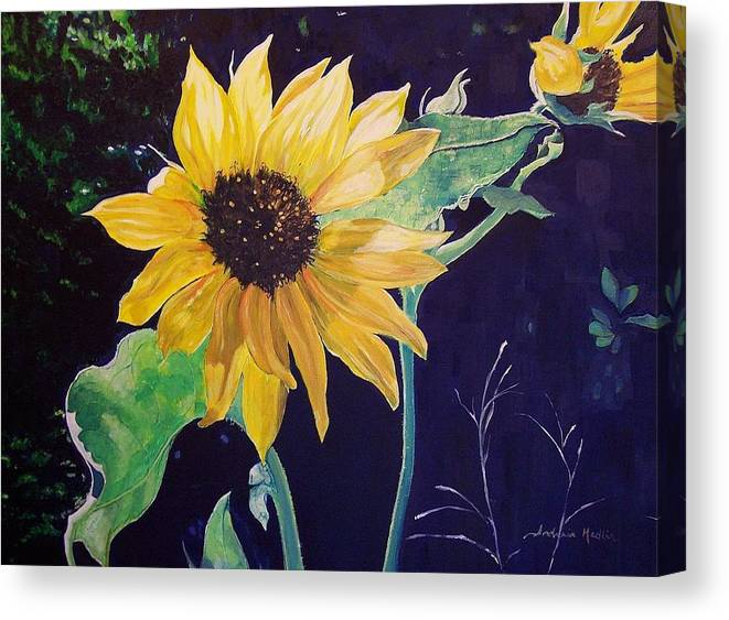 Sunflower Canvas Print featuring the painting Midday Sunflower by Andreia Medlin