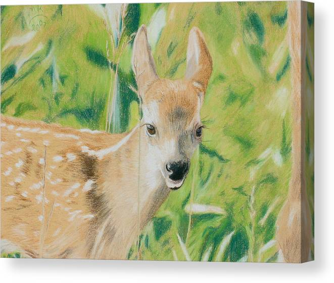 Fawn Canvas Print featuring the painting Alert Fawn by Miriam A Kilmer