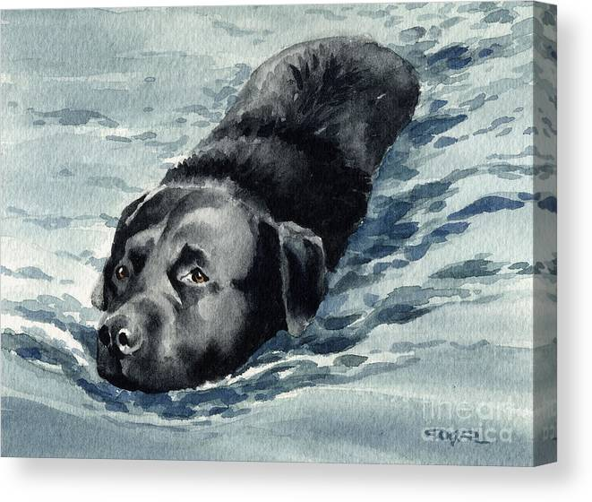 Black Lab Canvas Print featuring the painting Black Lab Swimming by David Rogers
