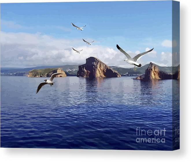 Sea Birds Canvas Print featuring the mixed media Looking For Breakfast by Clive Littin