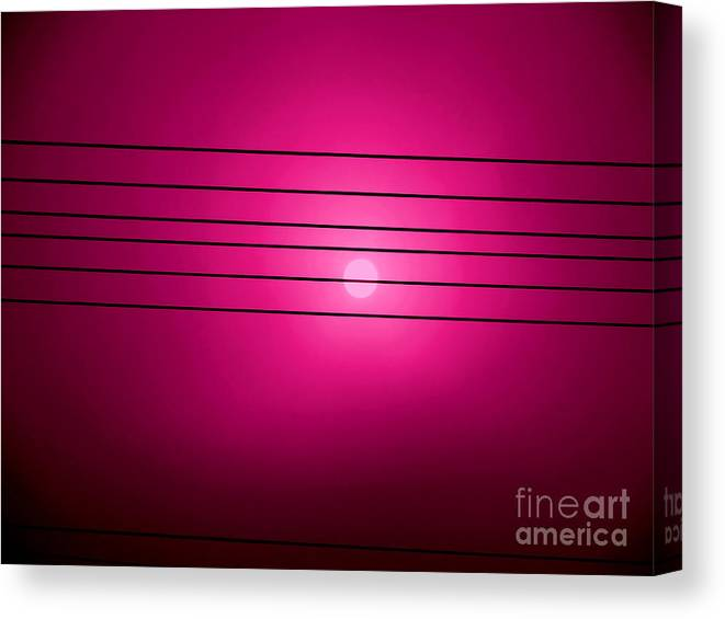 Morning Sun Canvas Print featuring the photograph Morning Sun In G Marionberry by Martin Brockhaus