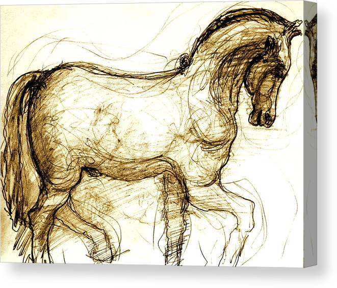 Horse Canvas Print featuring the drawing Set The Stallion Free by Dan Earle