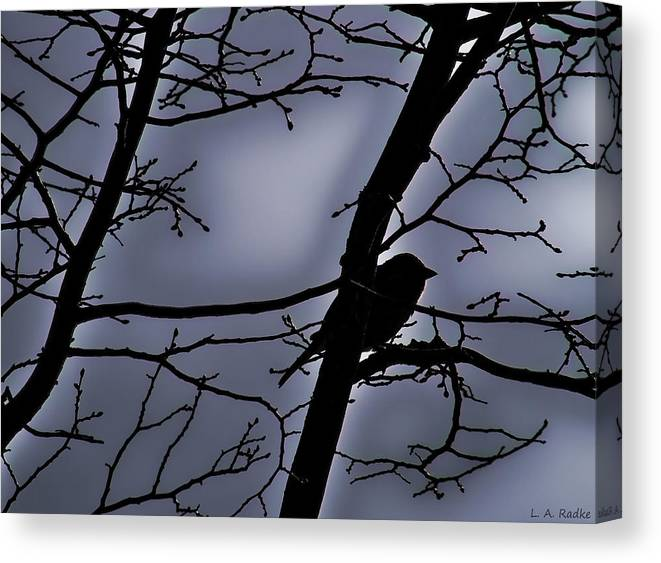 Night Canvas Print featuring the photograph Twilight by Lauren Radke