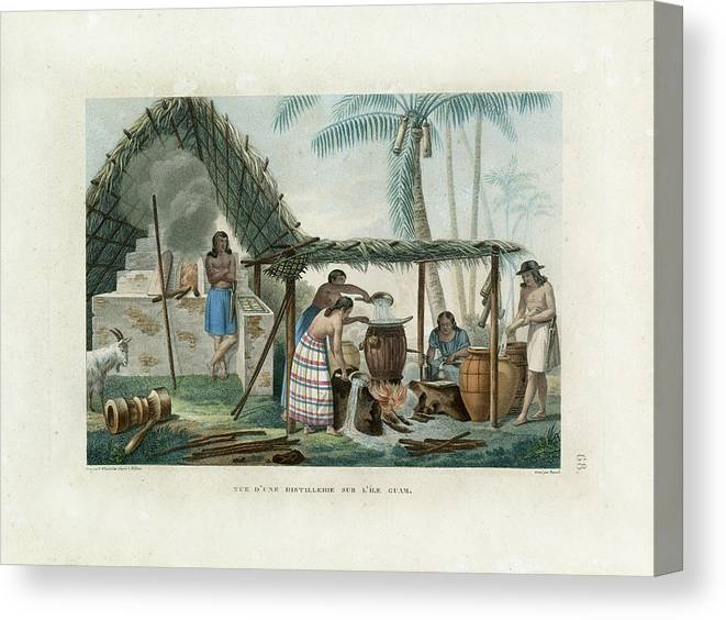 Guam Canvas Print featuring the drawing Vue Dune Distillerie Sur L Ile Guam Distillery Scene On Guam by d Apres A Pellion