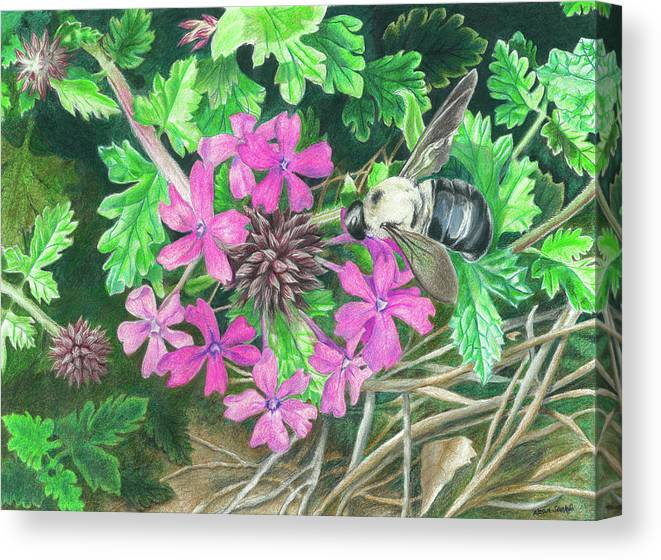 Bee Canvas Print featuring the drawing Bumblebee's Lunchtime by Akosua Sankofa