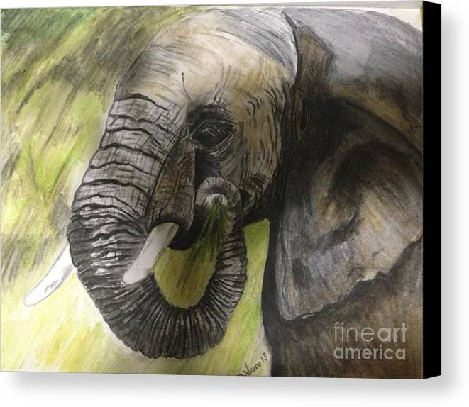 Elephant Canvas Print featuring the drawing Elephant by Deborah Vicino