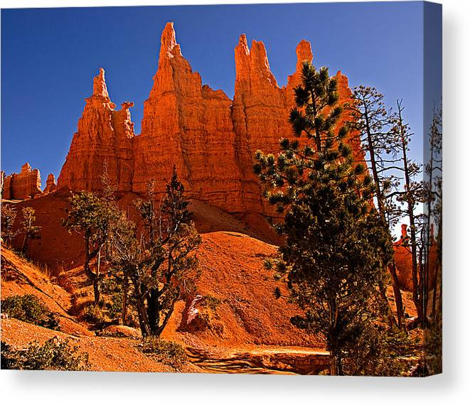 Landscape Canvas Print featuring the photograph Bryce Canyon N.p. by Larry Gohl