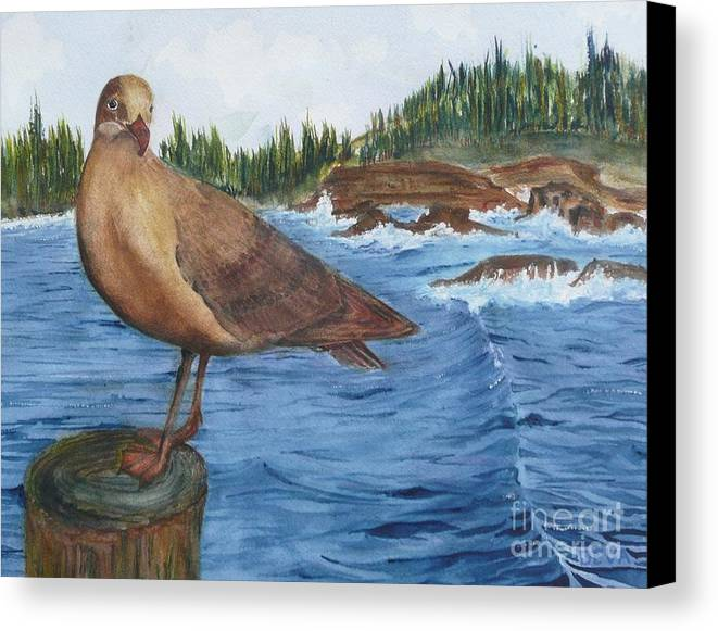 Seagull Canvas Print featuring the painting Seagull by Deva Claridge