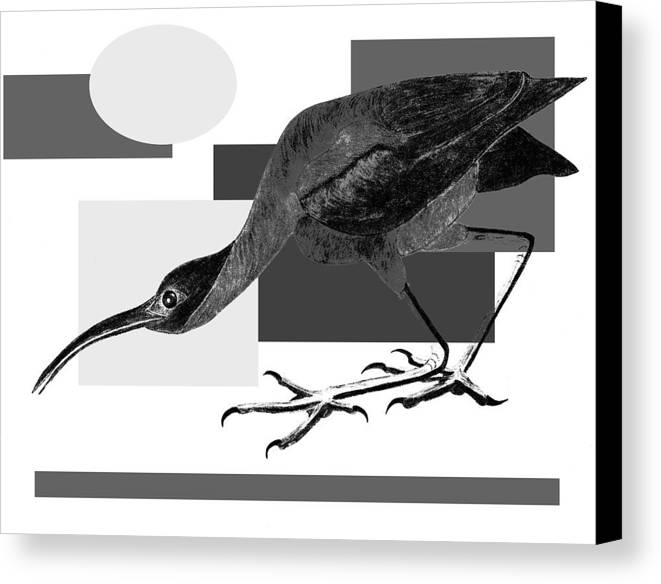 Bird Canvas Print featuring the painting Shadow Dancing by Tess M J Iroldi