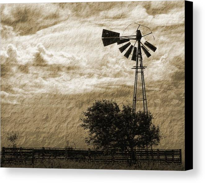 Sepia Canvas Print featuring the photograph Wind Blown by Tony Grider