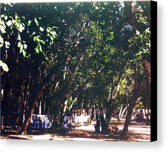 Trees Canvas Print featuring the photograph Mayan Tapestry by Jennifer Ott