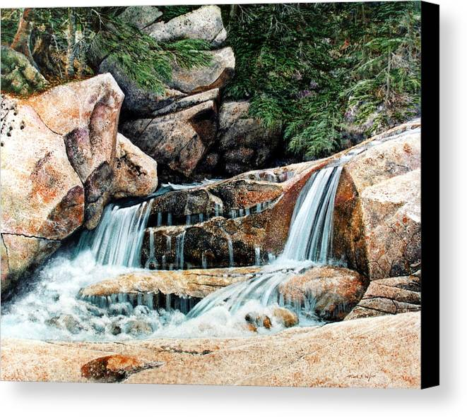 Landscape Canvas Print featuring the painting Mountain Stream by Frank Wilson
