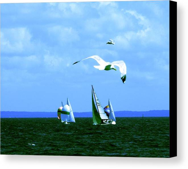 Landscape Canvas Print featuring the photograph Soaring by Kendall Eutemey