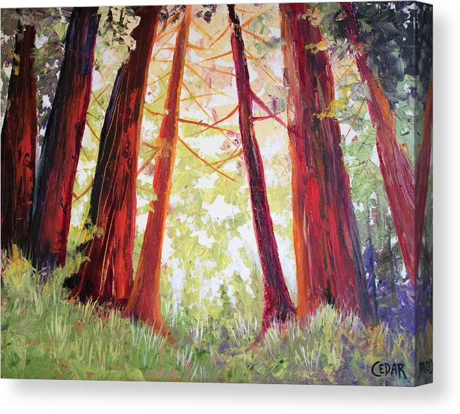 Cedar Lee Canvas Print featuring the painting Sunshine by Cedar Lee