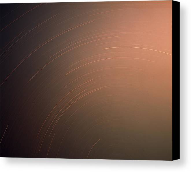 Nature Canvas Print featuring the photograph Silver Star Dial by Benjamin Garvey