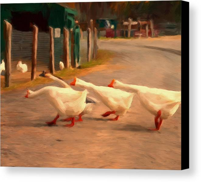 Geese Canvas Print featuring the painting Goose Crossing by Michael Pickett