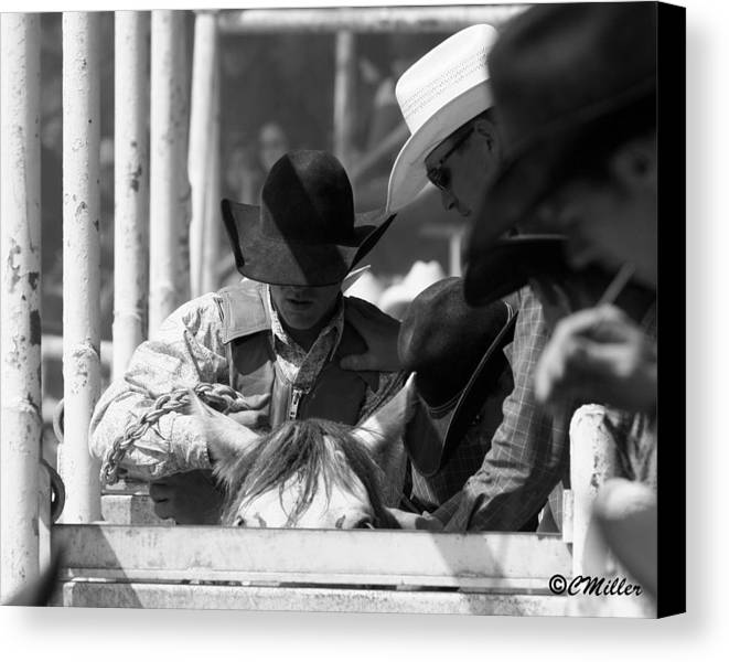 Rodeo Canvas Print featuring the photograph Easing In by Carol Miller