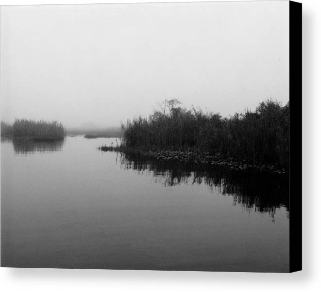 Nature Canvas Print featuring the photograph Misty Glades by Cindy Gregg