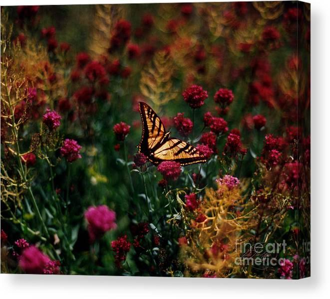 Butterfly Canvas Print featuring the digital art Butterfly by Vicki Lea Eggen
