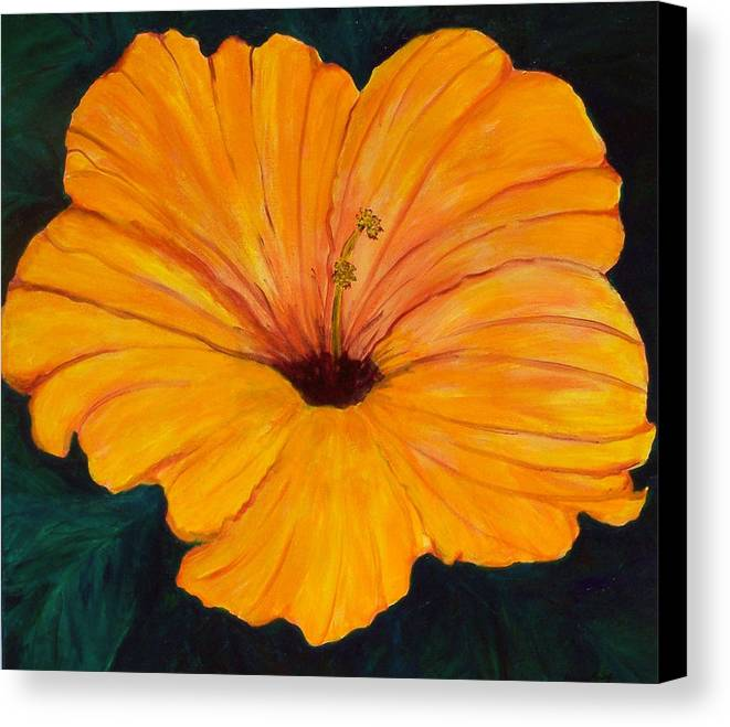 Flowers Canvas Print featuring the painting Solid Gold by Marcia Paige