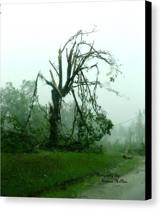 Tree Damaged By Tornado Canvas Print featuring the digital art Aftermath by Suzanne McClain