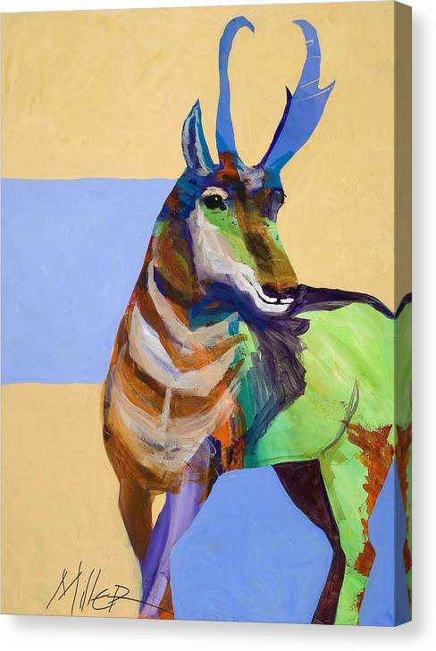 Proghorn Canvas Print featuring the painting Lone Pronghorn by Tracy Miller