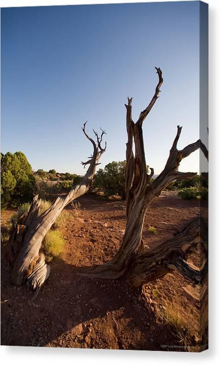 U.s.a. Canvas Print featuring the photograph Moab by Luigi Barbano BARBANO LLC