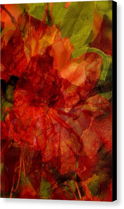 Abstract Canvas Print featuring the digital art Blood Rose by Tom Romeo