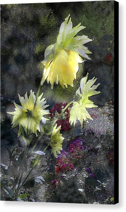 Sun Flower Canvas Print featuring the digital art Sunflower Dream by Tom Romeo