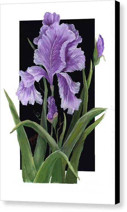 Paining Canvas Print featuring the painting Iris One by Marveta Foutch