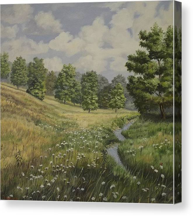 Cloudy Skies Canvas Print featuring the painting Field And Stream by Wanda Dansereau