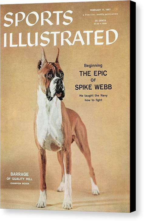 Magazine Cover Canvas Print featuring the photograph Barrage Of Quality Hill, 1955 Westminster Kennel Club Dog Sports Illustrated Cover by Sports Illustrated